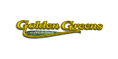 Golden Greens